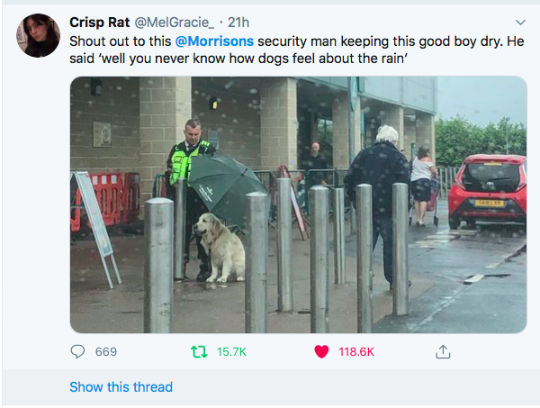 Morrisons employee shelters dog with umbrella in the rain